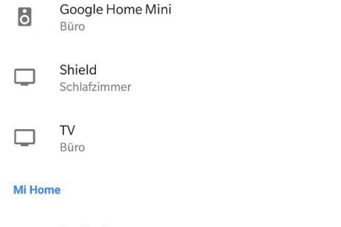 Roborock Google Assistant